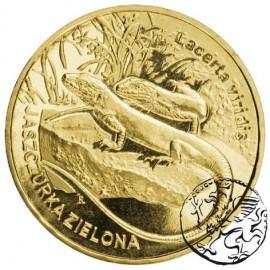 III RP, 2 złote, 2009, Jaszczurka zielona