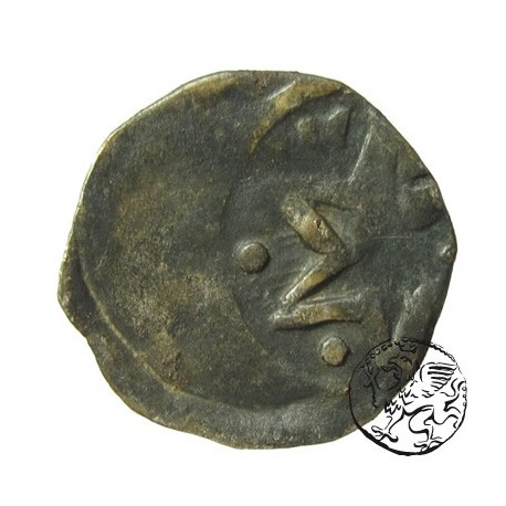 Pomorze Stargard, denar XIV wiek